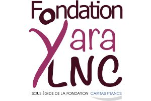 UEDF-yara-logo