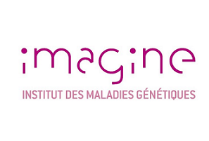 L'institut Imagine