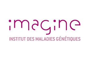 L'institut Imagine