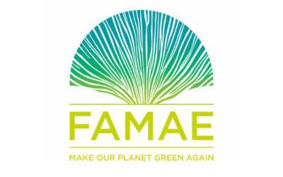 FAMAE : quatrième concours international d'innovations sur l'environnement